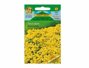 Tarica skalné Yellow 200 semien