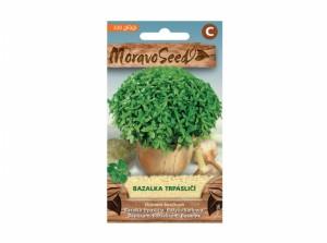 Bazalka trpasličí 320 semien