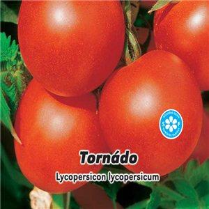 Rajčiak kolíkový-F1 Tornádo (zelenina: Lycopersicon lycopersicum) 0,2 g osiva paradajok
