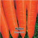 Mrkva neskorá Katlen - semená 3 g