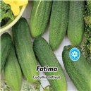Uhorka nakladačka F1, hustoostná - Fatima 1, - semená 3 g
