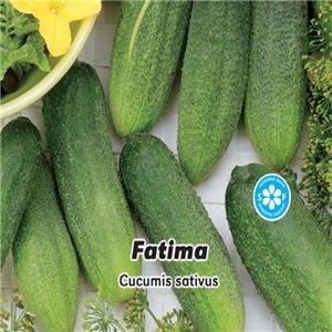 Uhorka nakladačka Fatima 1,3 g osiva uhorky