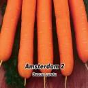 Mrkva Amstrdam skorá, karotka - semená 3 g