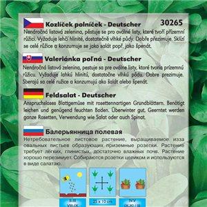 Valeriánka poľná - Deutscher (zelenina: Valerianella locusta) 1 g osiva valeriány