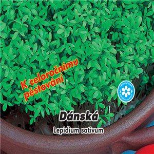 Žerucha záhradná - Dánska (zelenina: Lepidium sativum) 5 g osiva žeruchy