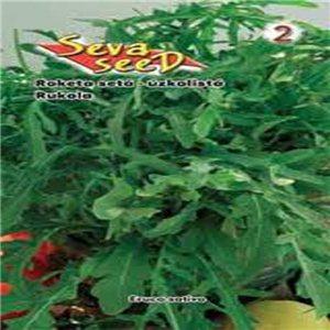 Roketa siata - úzkolistá (zelenina: Eruca sativa) 0,6 g osiva rokety