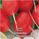 Reďkovka - Ilka - semená 5 g