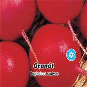 Reďkovka červená - Granát (zelenina: Raphanus sativus) 5 g osiva reďkovky