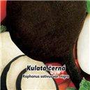 Reďkev siata - Guľatá čierna 2, - semená 5 g