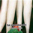Reďkev japonská - Japonská obrie - semená 1 g