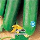 Uhorka siata šalátová F1, poľné - Natálie - semená 1 g