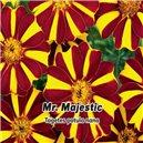Aksamitník rozkladitý jednoduchý - Mr. Majestic - semena 0,3 g