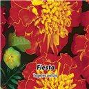 Aksamietnica rozložitá - Fiesta - semená 0,8 g