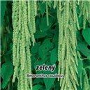 Laskavec ocasatý - Směs barev - semena 0,2 g