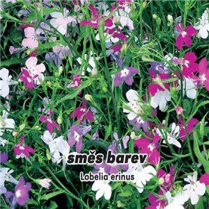 Lobelka drobná - zmes farieb (kvetina: Lobelia erinus) 0,2 g osiva lobelky