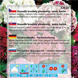 Hvozdník karafiát - Chabaud - zmes farieb (kvetina: Dianthus barbatus) 0,5 g osiva klinčeka
