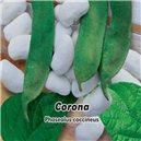 Fazuľa kolíkový - Velkozrný - Corona 1, - semená 5 g