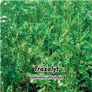 Kozlík lékařský  - semena 0,2 g