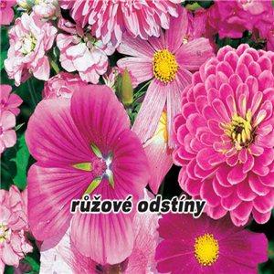 Směs letniček - růžové odstíny