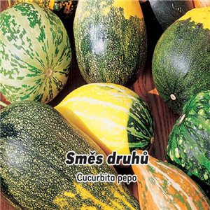 Okrasné tekvičky - semená 3 g