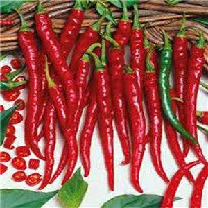 Cayenne Long Chilli - semienka rastliny 10 ks