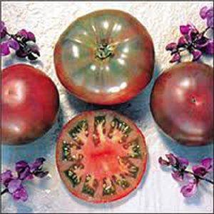 Paradajka Cherokee 1 (Lycopersicon esculentum) - semená 5 ks