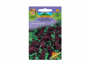 Bazalka balkónová Aromatic plants 160 semien
