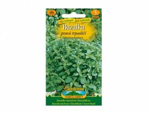 Bazalka pravá trpasličí 320 semien