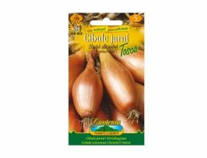 Cibuľa jarná žltá dlhá Tosca 150 semien
