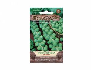 Kapusta růžičková Casiopea 230 semen