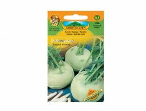 Kedluben raný Cabbage vegetables 200 semen
