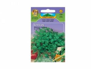 Trebuľka - cca 350 semien