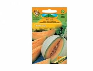 Meloun cukrový Melba 20 semen