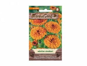 Nechtík lekársky 65 semien