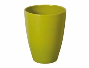 Květník FALENOPSIA TRADICO d13cm/zelená lesk/