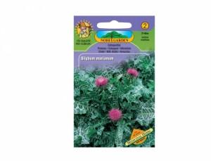 Ostropestřec Medicinal herbs 40 semen