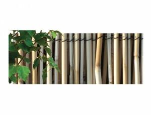 Přírodní rohož z rákosu - lesk 1x5m