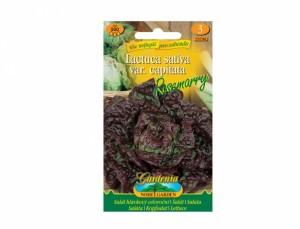 Salát hlávkový celoroční Rosemarry 500 semen