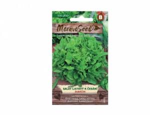 Salát listový k česání Dubáček 500 semen