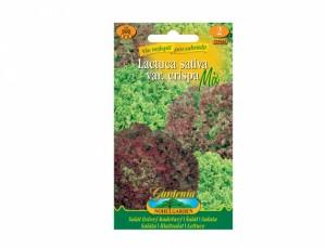 Šalát listový kučeravý 500 semien