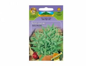 Šalvia lekárska Aromatic plants 20 semien