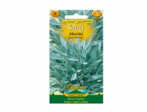 Šalvia lekárska 40 semien