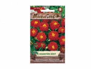 Aksamitník nízký 160 semen