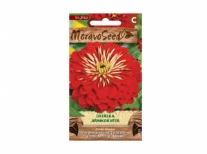 Ostálka jiřinkokvětá 50 semen