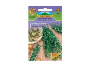 Rozmarýn lékařský Aromatic plants 50 semen
