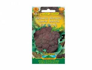 Brokolica Miranda 30 semien