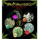 Sativa / Indica Mix A - semená 10 ks feminizovaná semená Green House Seeds