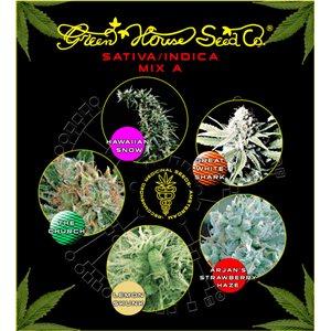Sativa / Indica Mix A - semienka 10 ks feminizovaná semienka Green House Seeds