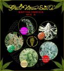 Sativa / Indica Mix A - semená 5 ks feminizovaná semená Green House Seeds