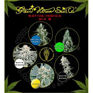 Sativa / Indica Mix B - semienka 5 ks feminizovaná semienka Green House Seeds